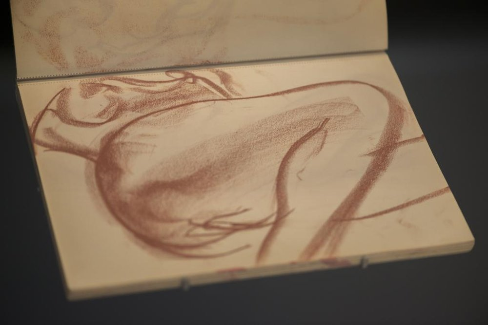 Sketchbook of Zao Wou-Ki (photo Christian Baraja)