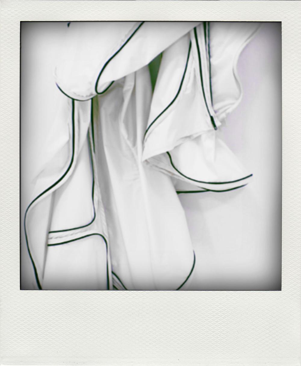 petal_03.jpg