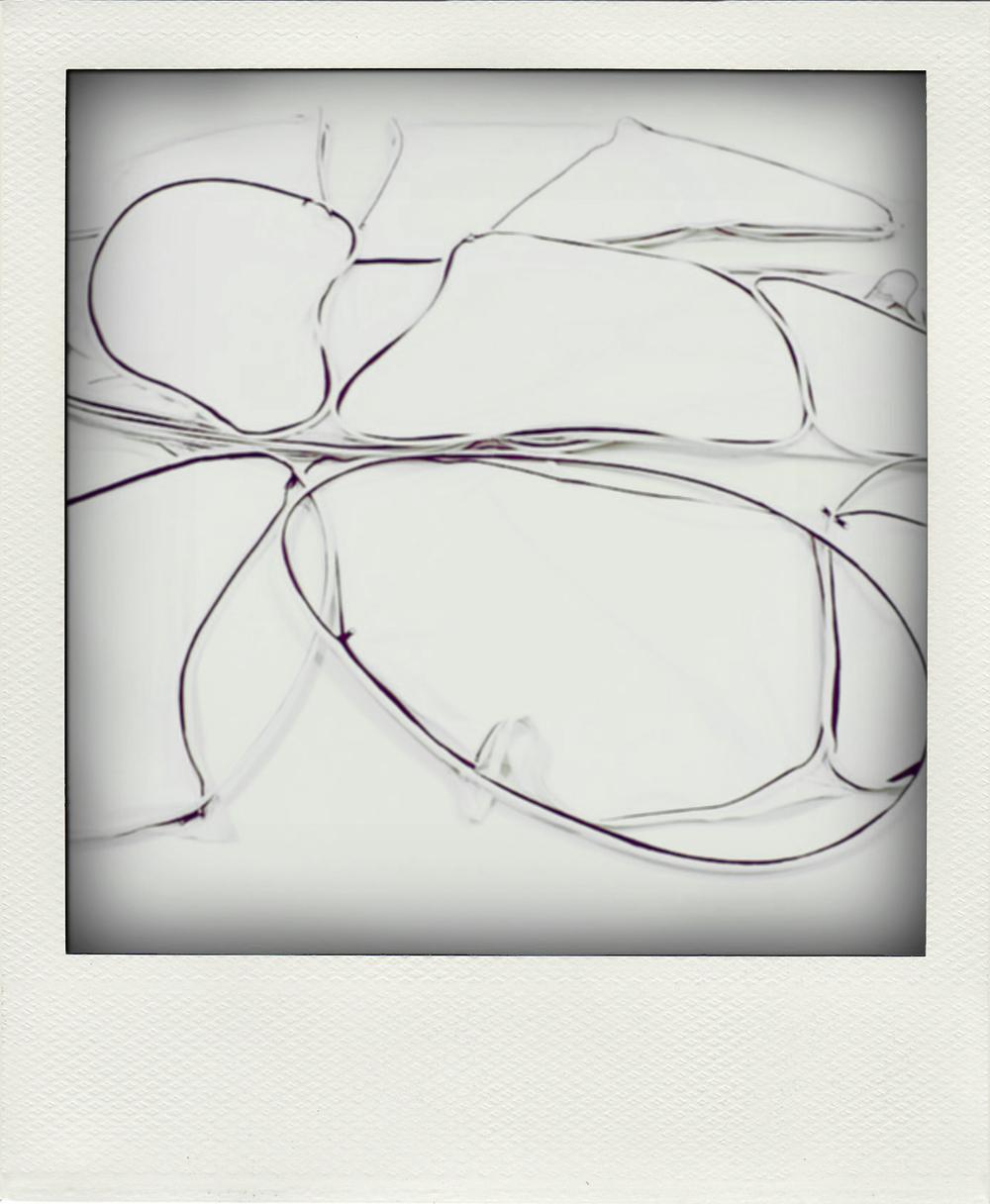 petal_05.jpg