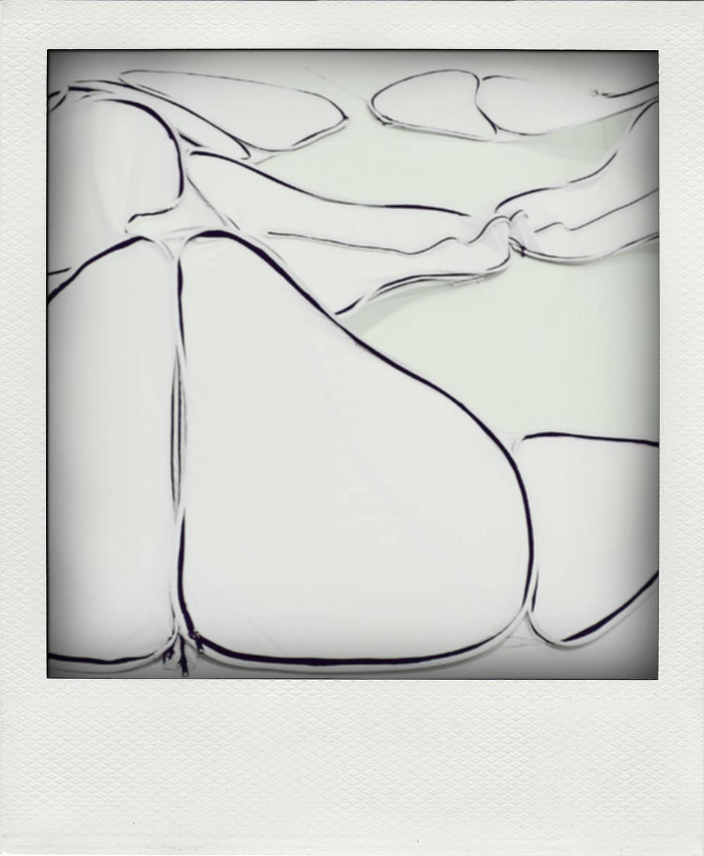 petal_06.jpg