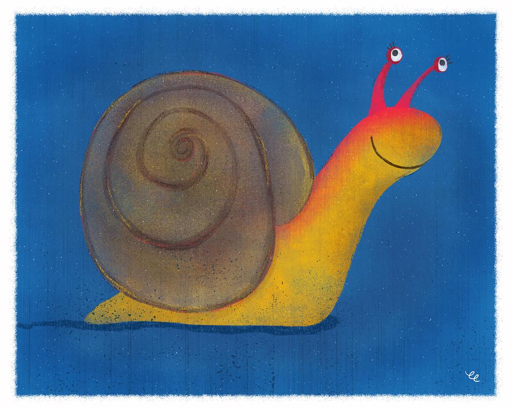 WEEK 3:  Snail