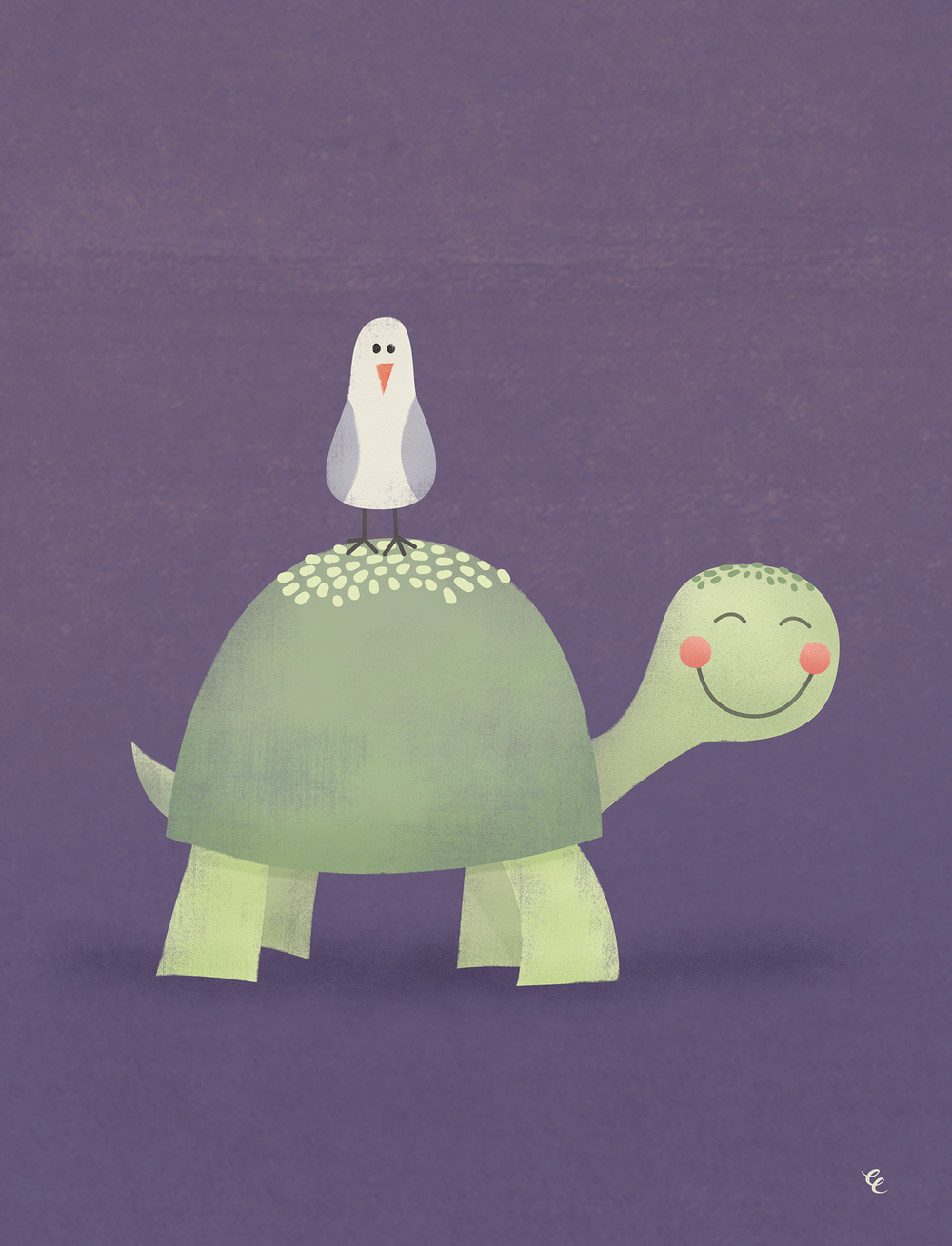 WEEK 9: a Friendly Turtle