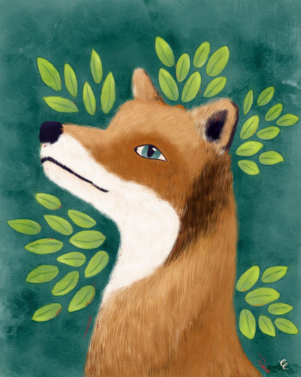 WEEK 37:  Fox