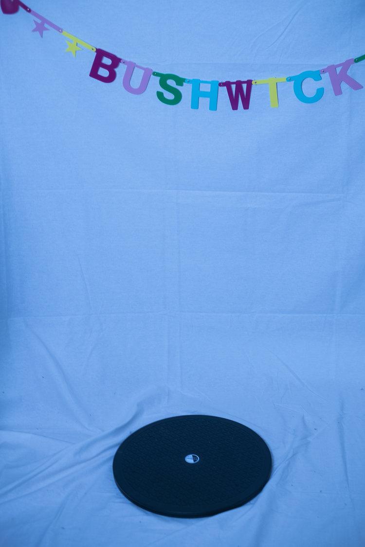 bushwick_spin.jpg
