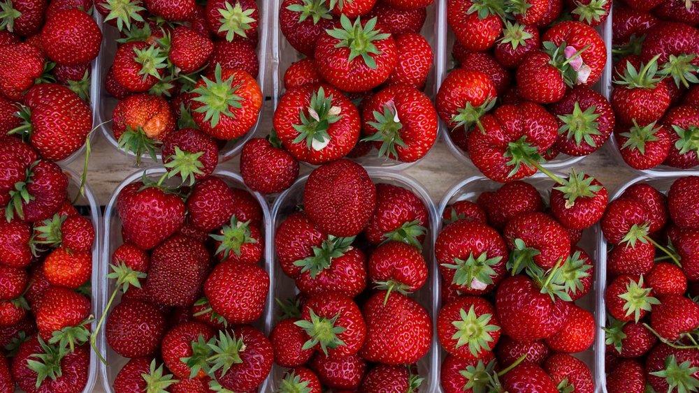 Terracina  strawberries in the Campo de Fiori, Rome