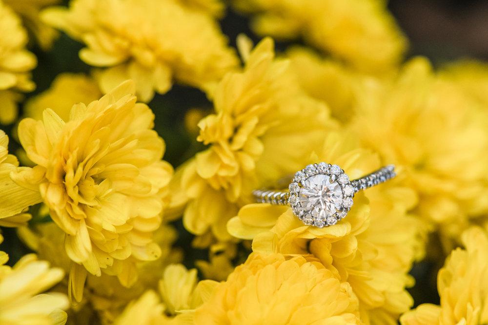 LBI Engagement Photos Barnegat Light NJ Ring in Flower