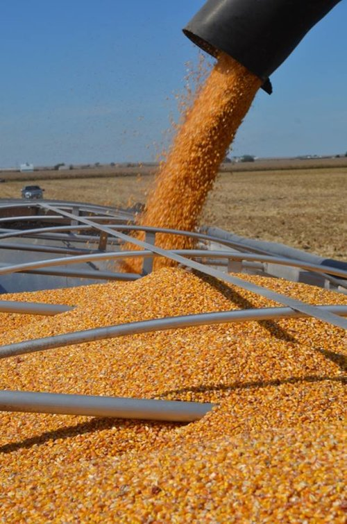 Drafting Crop Production Contracts  Janzen Ag Law