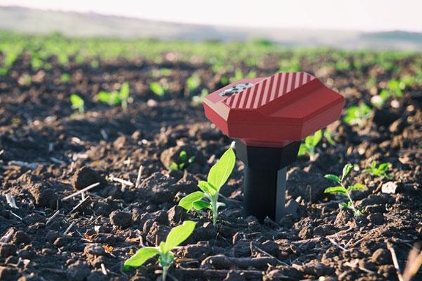 Teralytic Soil Probe.jpg