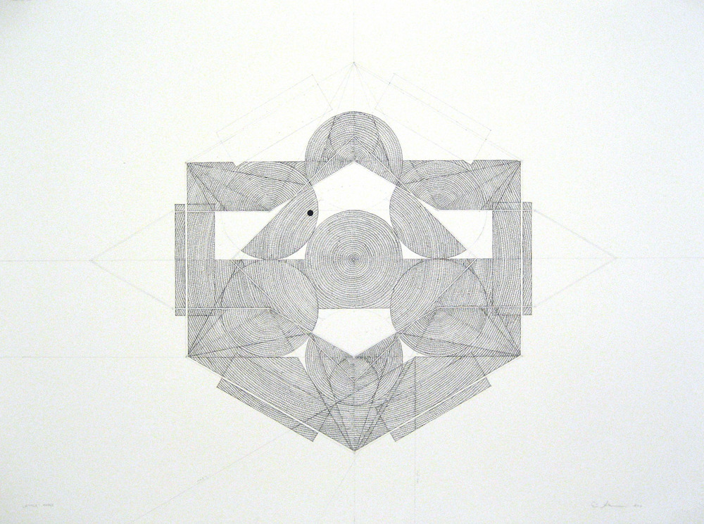 2011 ink with graphite 30 x 22 inches