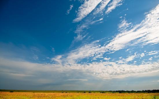 the-wide-open-sky-of.jpg