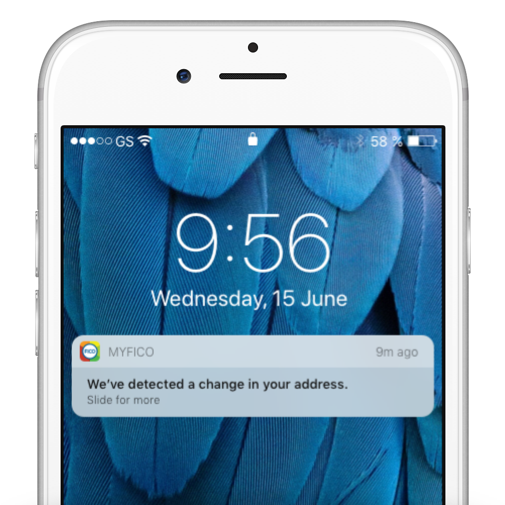 Identity Monitoring - Alerts.png