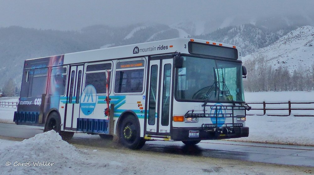 Mountain Rides bus winter WM. Credit Carol Waller.JPG