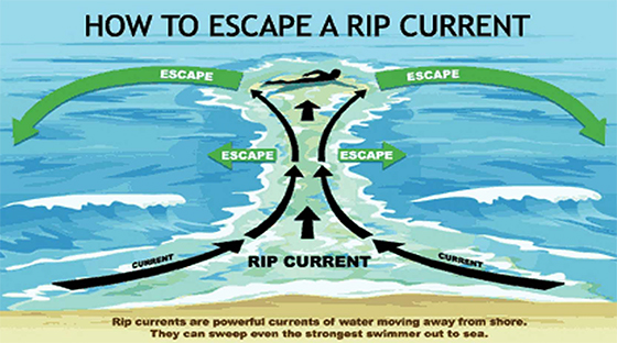 https://www.fire.lacounty.gov/lifeguard/rip-currents/
