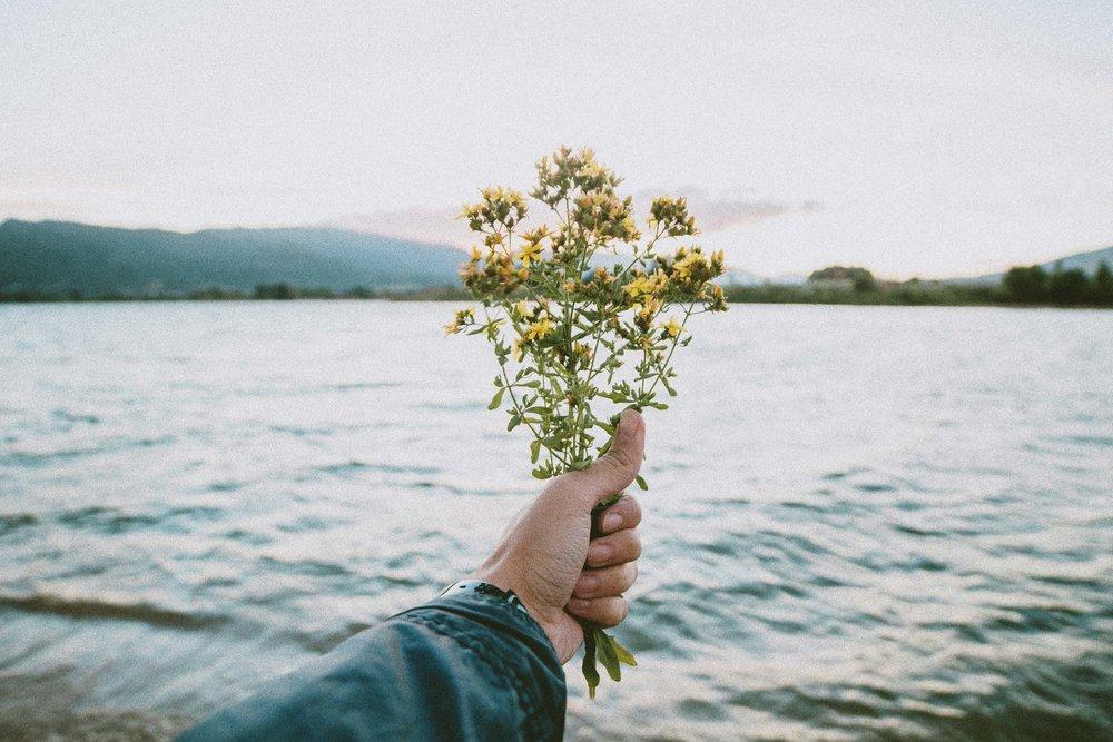 flowerbouquet.jpg