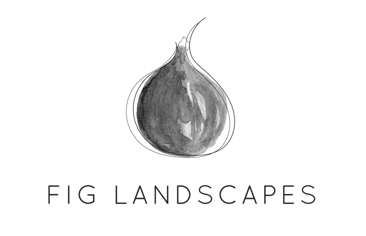 Fig Landscapes: Sydney Landscape Design