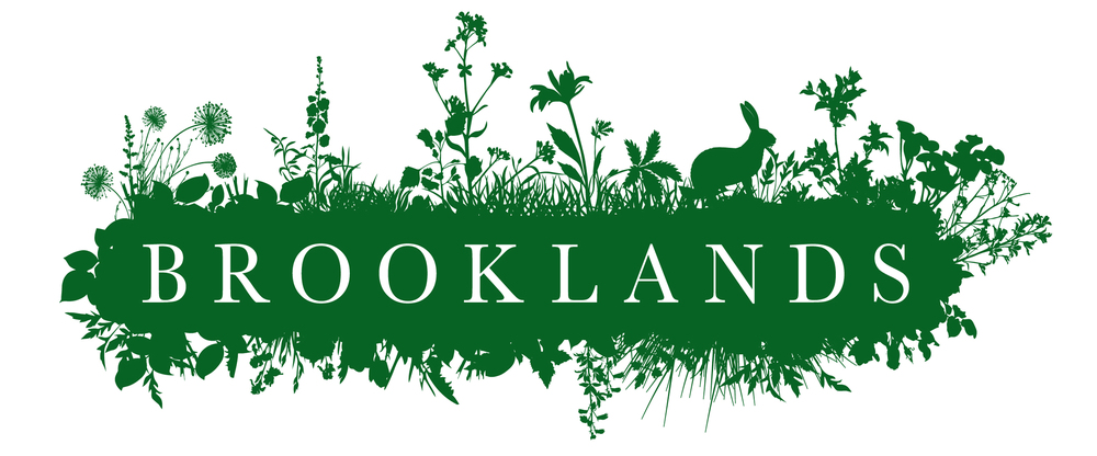 Brooklands identity design logo