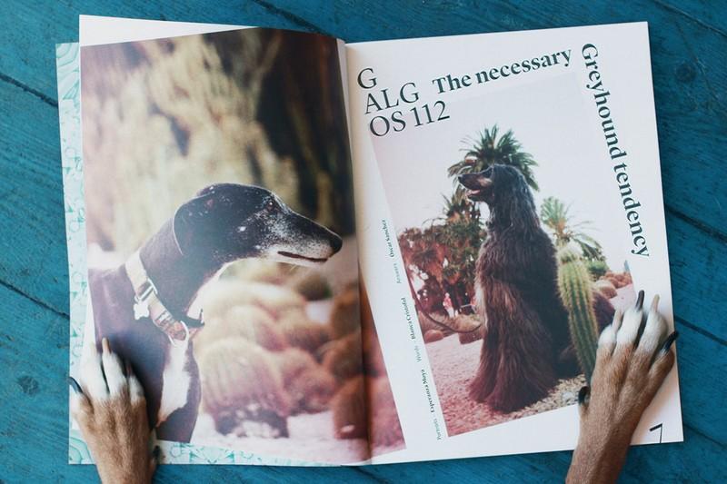 doble pagina revista agapornis