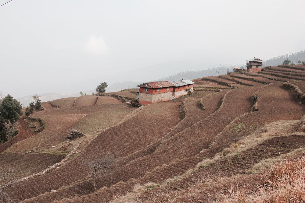 The Landscape in Gimdi