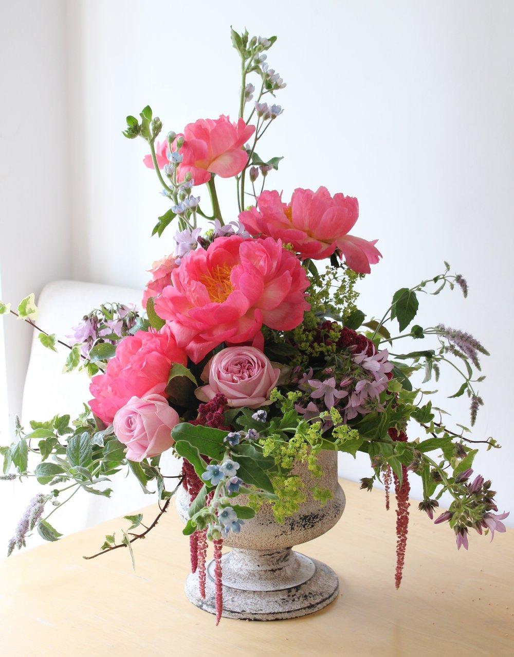 Paeonia 'Flame', Amaranthus, Oxypetalum coeruleum, Campanula glomerata, Mentha 'Tigra' an Rosa 'Aqua'