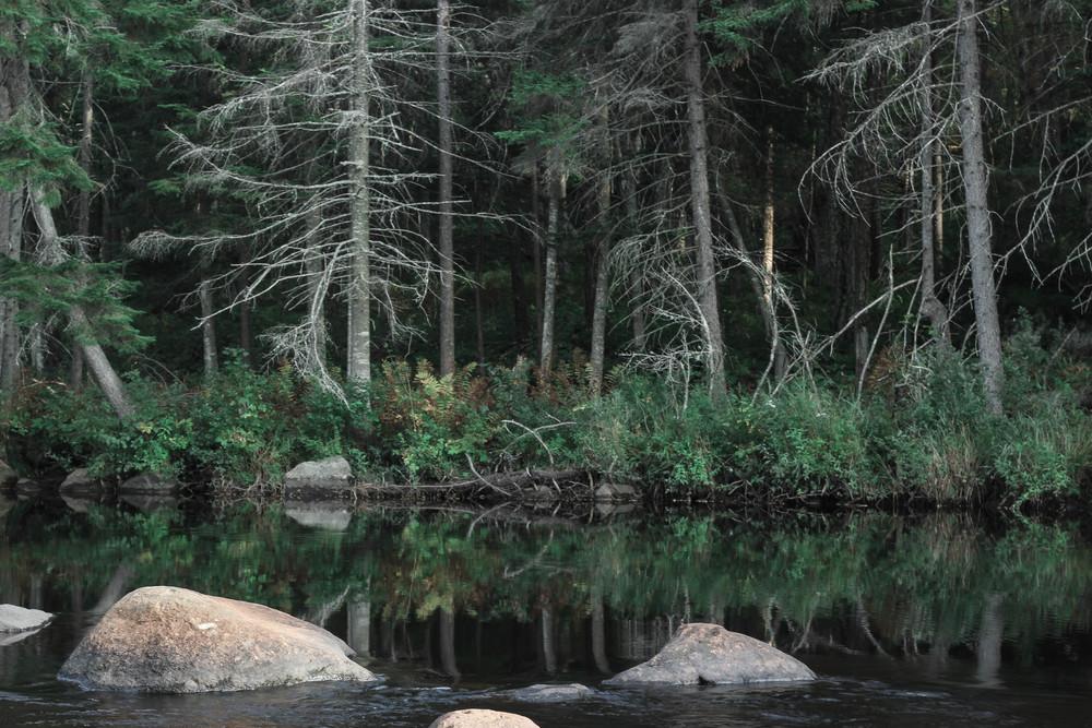 river_adirondacks_1.jpg