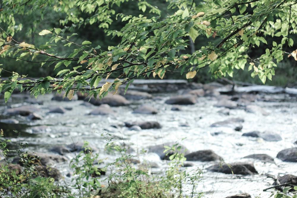 river_adirondacks.jpg