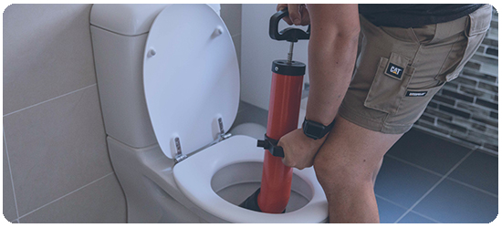 Clogged toilets -
