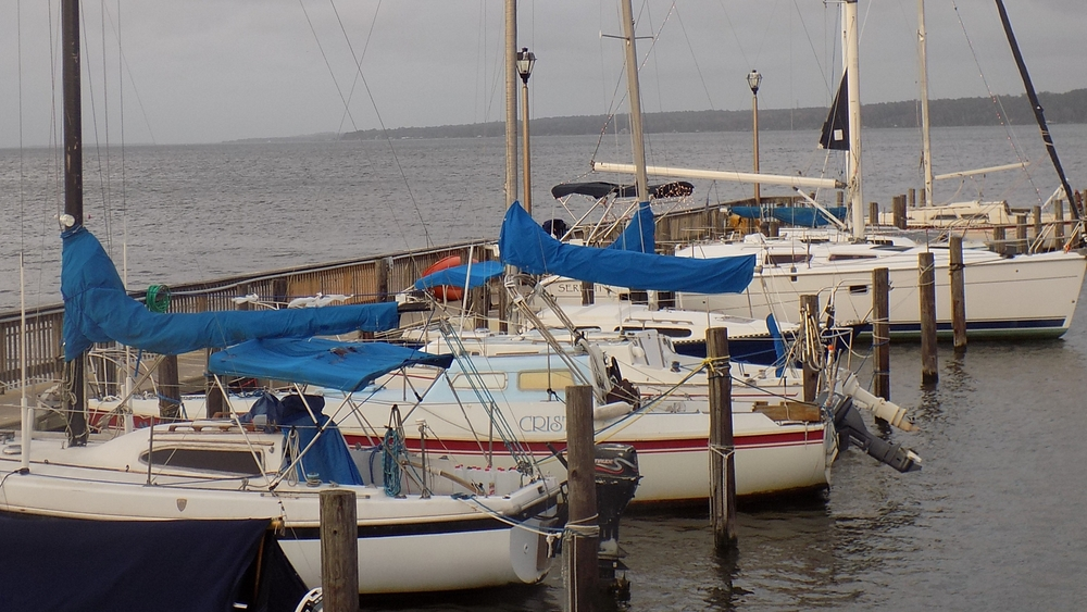 Marina at Fairhope Pier