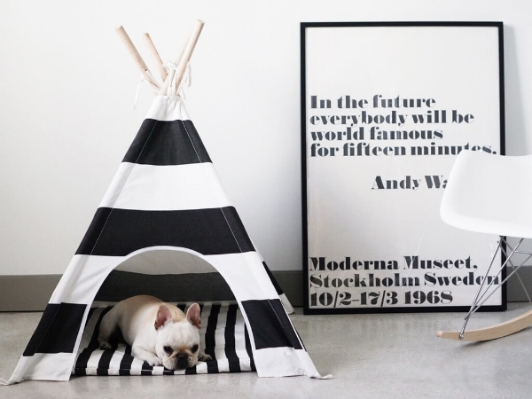 Design-with-pets-4