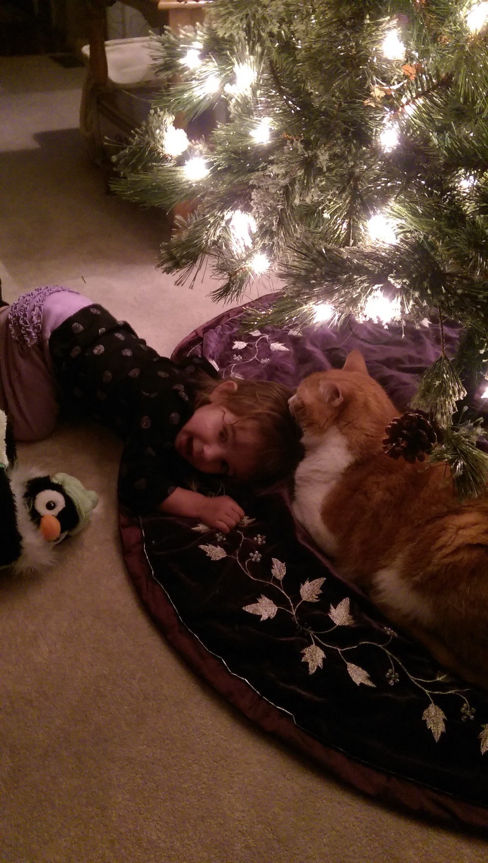 Cece and Pig love to lay down together under the Christmas tree.