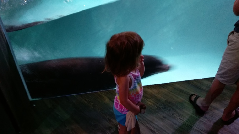 Cece and the sea lion
