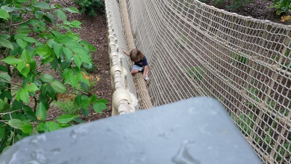 Cece on the rope bridge