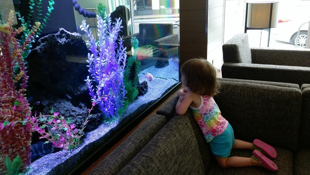 Cece loves fish