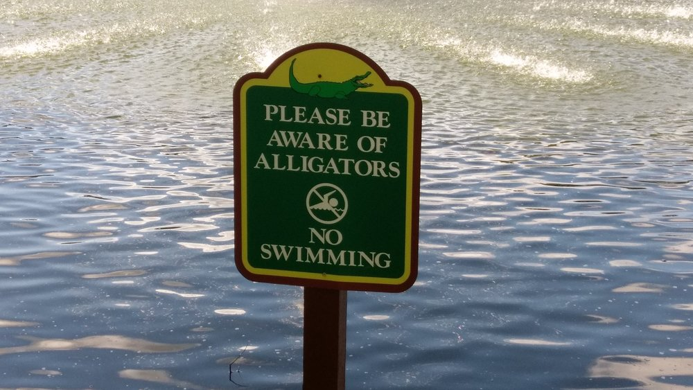 Don't go swimming