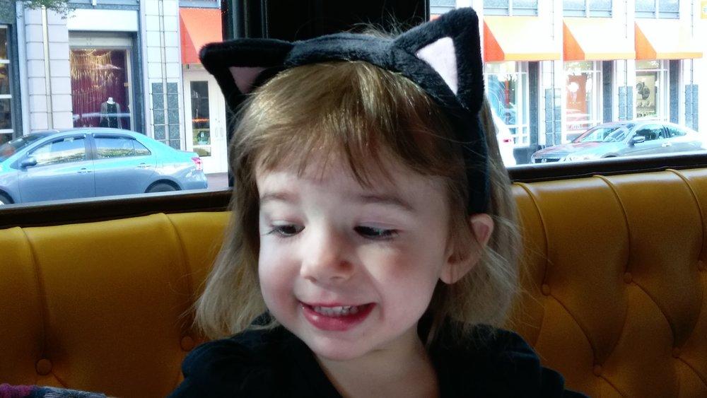 Halloween Kitty Cat