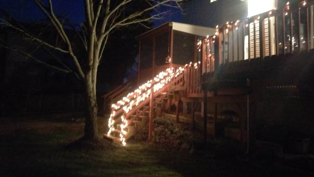 Christmas lights in the backyard too