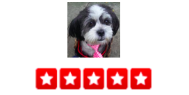 """Dogger   is amazing. We have a completely wonderful Shih Tzu, but we used to worry if she is getting enough exercise or playtime or stimulation during the day. No more! Every day, Dogger uses this software program that allows you to see the GPS of where you dog walked. He includes photos and a little summary of what happened that day. Also, you can do credit card payments online so you never have to worry about having cash on hand or any of that nonsense. I've called a few times for last minute service when I couldn't leave work on time, and he's totally come though for me  .   -Barb S."