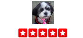 """Dogger is amazing. We have a completely wonderful Shih Tzu, but we used to worry if she is getting enough exercise or playtime or stimulation during the day. No more! Every day, Dogger uses this software program that allows you to see the GPS of where you dog walked. He includes photos and a little summary of what happened that day. Also, you can do credit card payments online so you never have to worry about having cash on hand or any of that nonsense. I've called a few times for last minute service when I couldn't leave work on time, and he's totally come though for me. -Barb S."