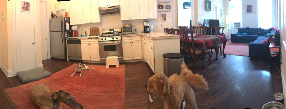 dogger HQ panorama.png