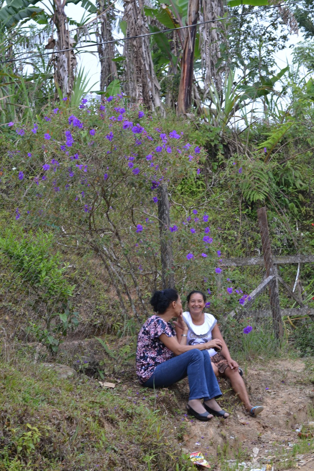 Women talking under flowering tree.jpg
