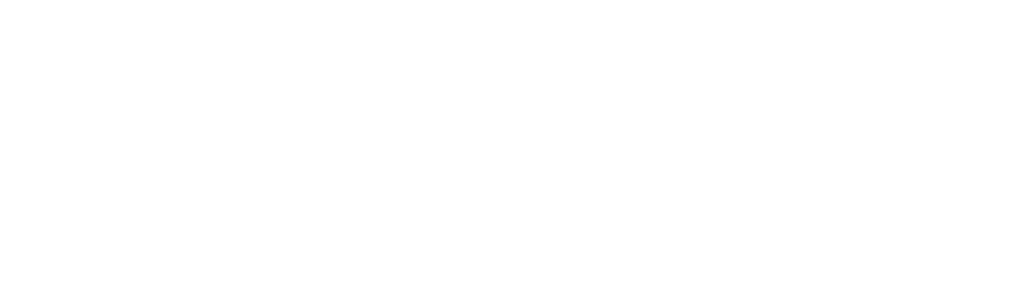MerCorp Ltd