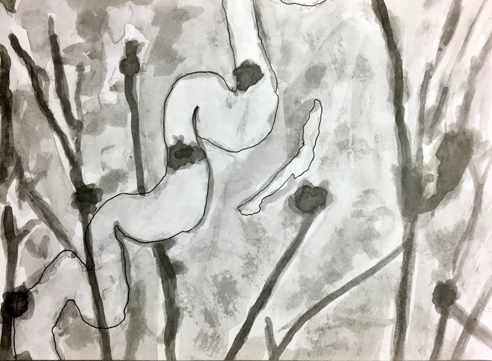 Pen & Ink 5x7, 2018