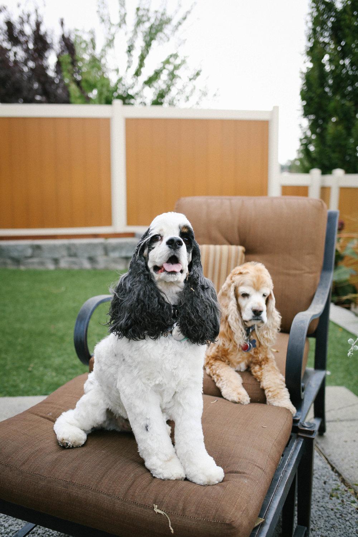 Eddie&Maggie-117.jpg