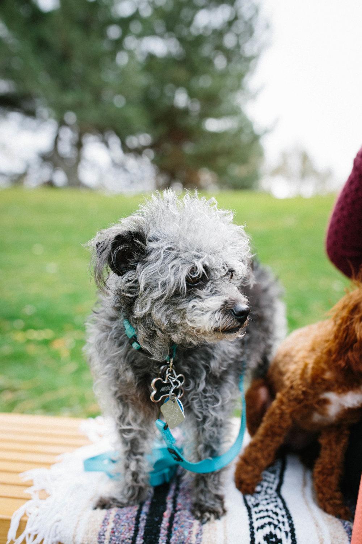 Molly&Maggie-35.jpg
