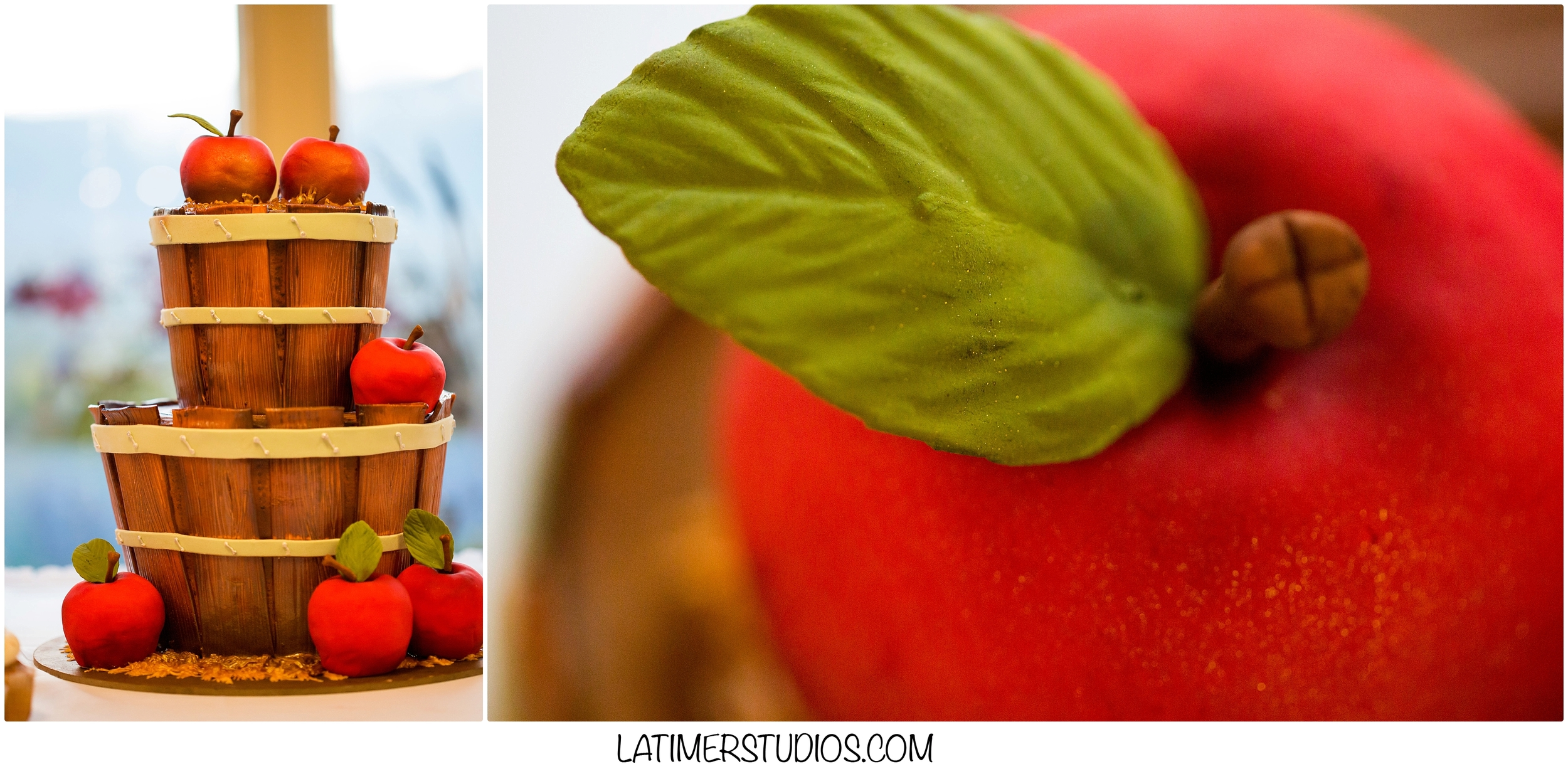 Latimer Studios Photography capturing a unique apple wedding cake for fall wedding decorations