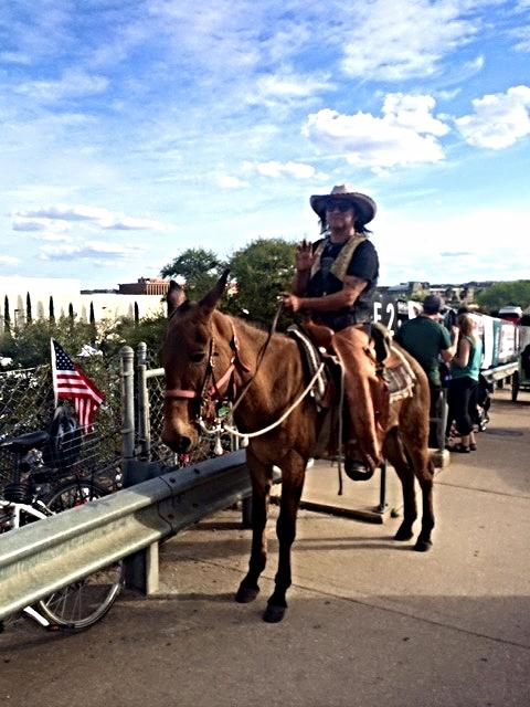 Austin Cowboy.jpg
