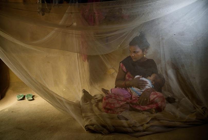 Mosquito net.jpg