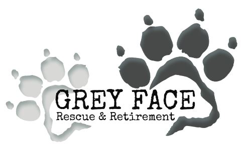 Grey Face Rescue & Retirement