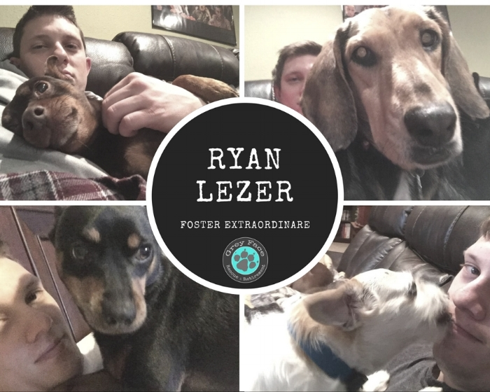 Ryan tried hard to get some selfies in with his fosters in the past. It seems they liked to steal the show though!