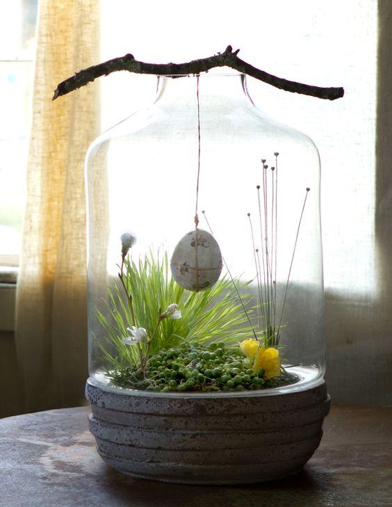 springterrarium.jpg