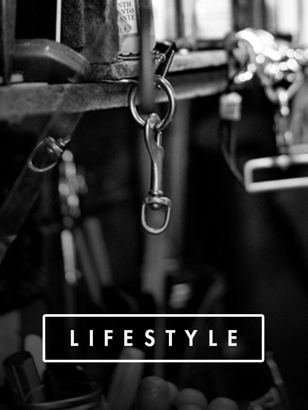 lifestyle_nav.jpg